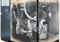 Cấu trúc bên trong của máy nén khí Ingersoll Rand
