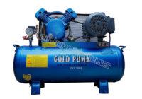 Vỏ ngoài của máy nén khí Gold Puma được thiết kế chắc chắn